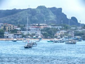 island style harbor smile