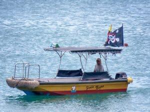Pirate Taxi