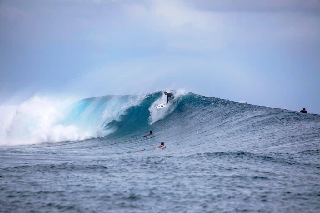 Frigates Nug Swell