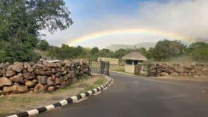 Banyan Tree, Flowers, Rainbow, & Private Roads