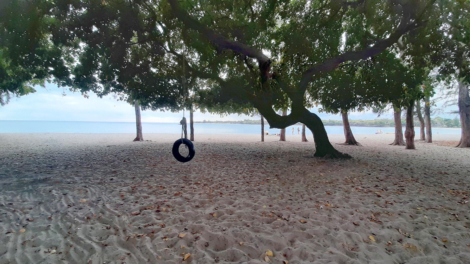 tire swing